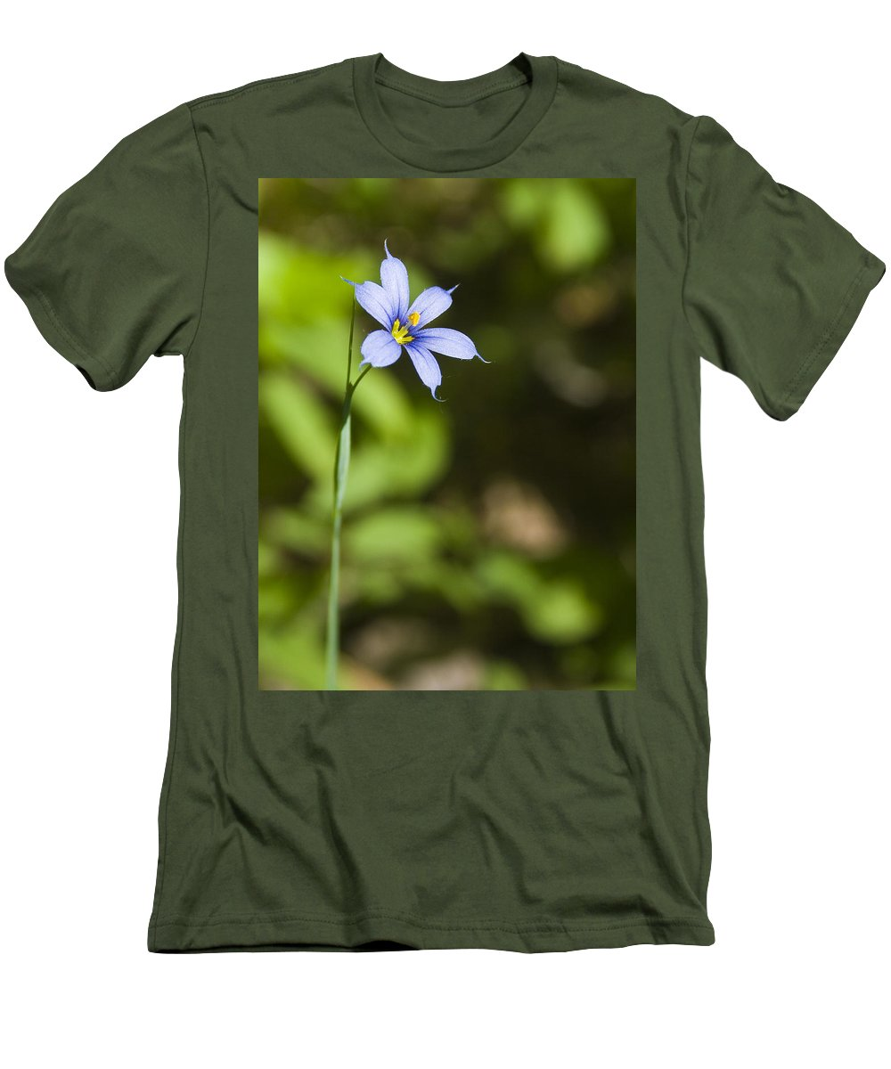 Blue Eye Grass Flower Nature Yellow Green Delicate Small Little Men's T-Shirt (Athletic Fit) featuring the photograph Blue-eyed Grass IIi by Andrei Shliakhau