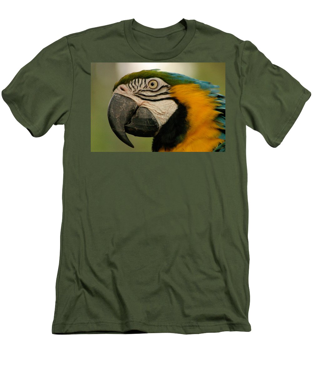 Parrot Men's T-Shirt (Athletic Fit) featuring the photograph Blue Gold Macaw South America by Ralph A Ledergerber-Photography