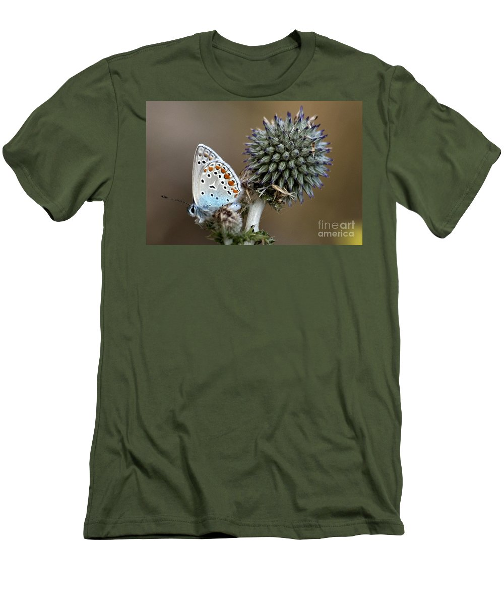 Butterfly Men's T-Shirt (Athletic Fit) featuring the photograph butterfly on a Echinops adenocaulon by Nahum Budin