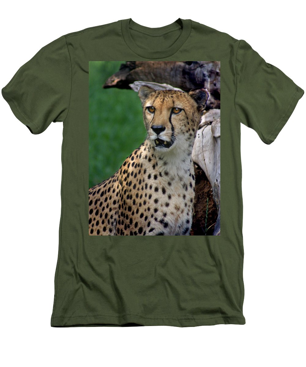 Cheeta Men's T-Shirt (Athletic Fit) featuring the photograph Cheetah by Heather Coen
