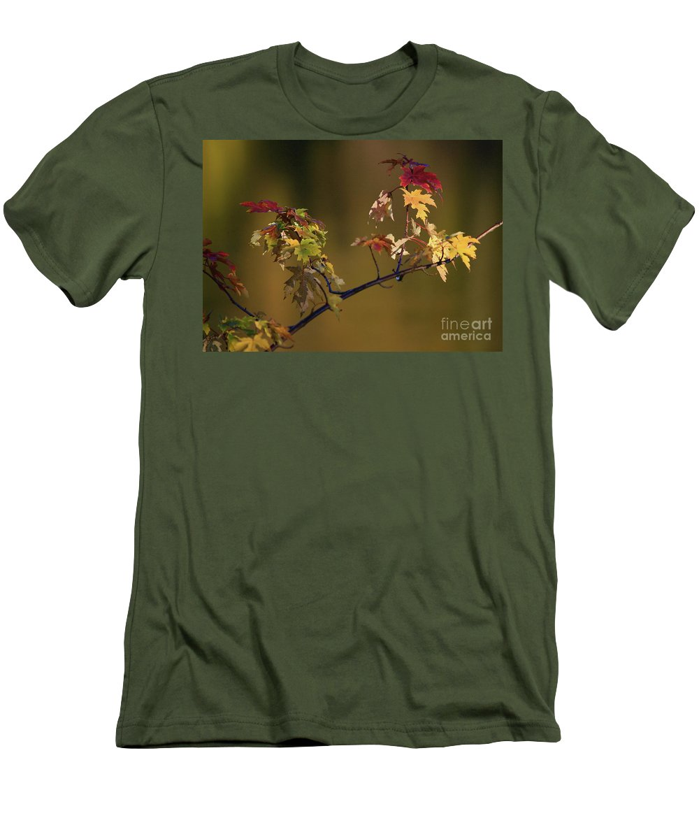 Fall Men's T-Shirt (Athletic Fit) featuring the photograph Color On A Stick by Robert Pearson