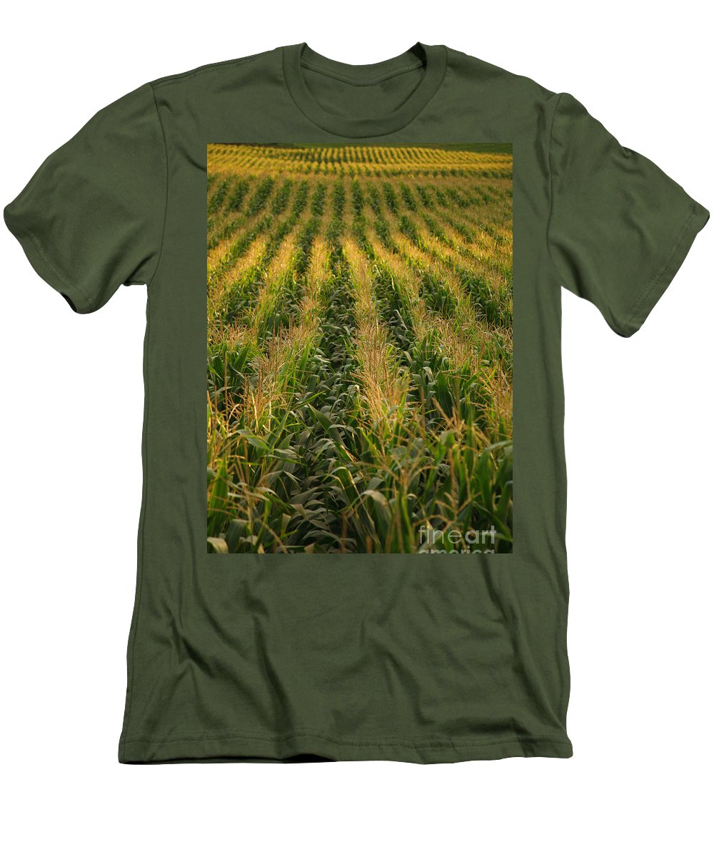 Acores Men's T-Shirt (Athletic Fit) featuring the photograph Corn Field by Gaspar Avila