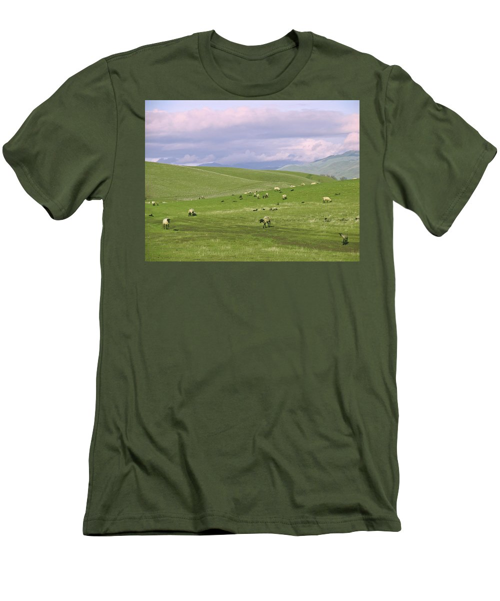 Landscape Men's T-Shirt (Athletic Fit) featuring the photograph Cross Road Sheep by Karen W Meyer