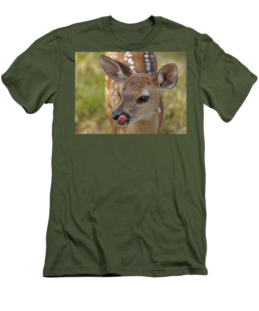 Deer Men's T-Shirt (Athletic Fit) featuring the photograph Delicious Deer by Heather Coen