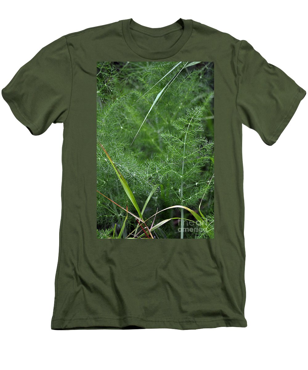 Clay Men's T-Shirt (Athletic Fit) featuring the photograph Dew On The Ferns by Clayton Bruster