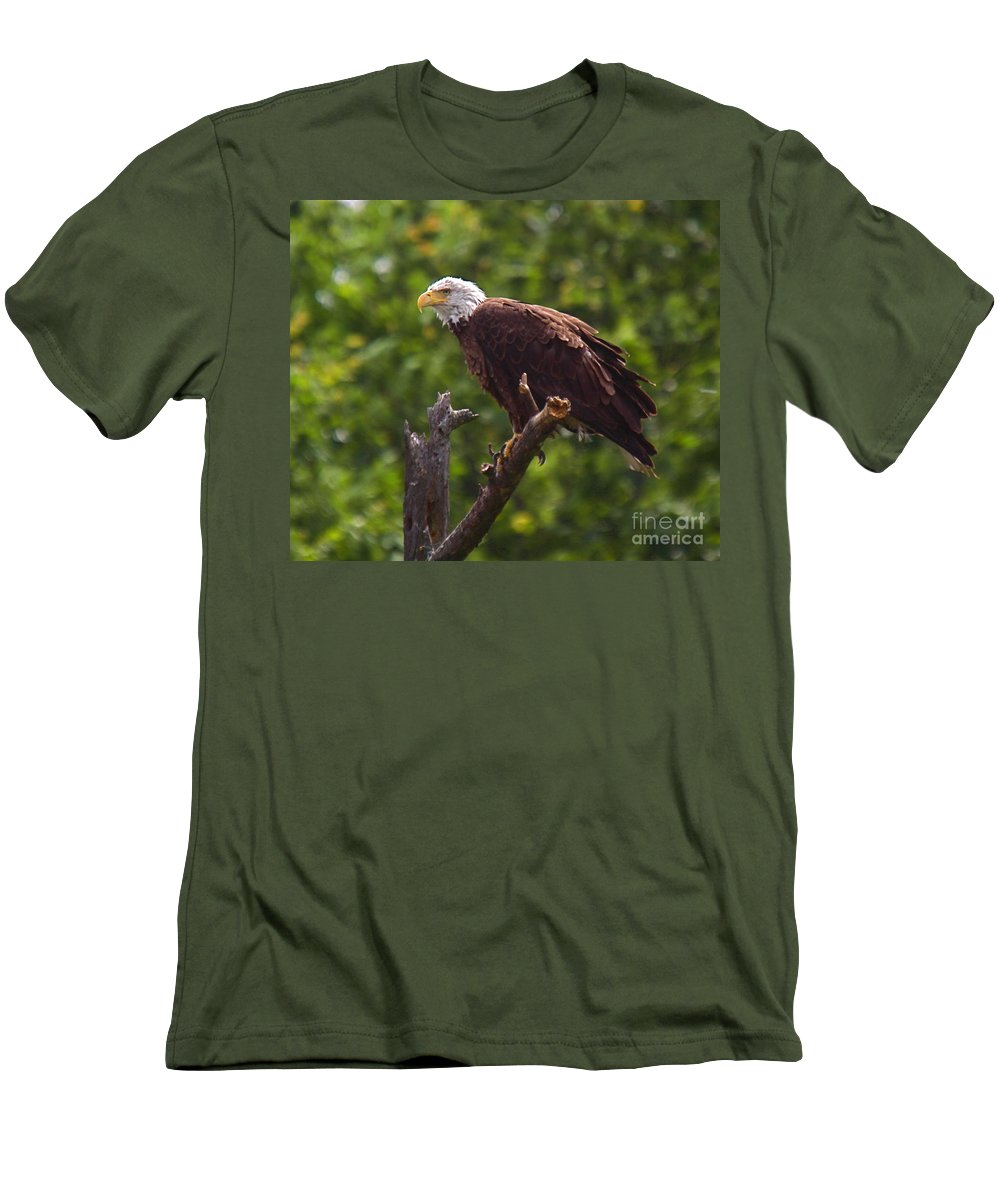 Eagle Men's T-Shirt (Athletic Fit) featuring the photograph Eagle-2 by Robert Pearson