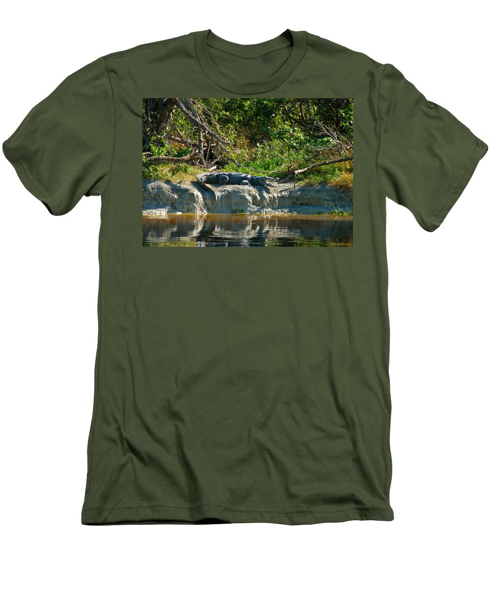 Everglades National Park Men's T-Shirt (Athletic Fit) featuring the photograph Everglades Crocodile by David Lee Thompson