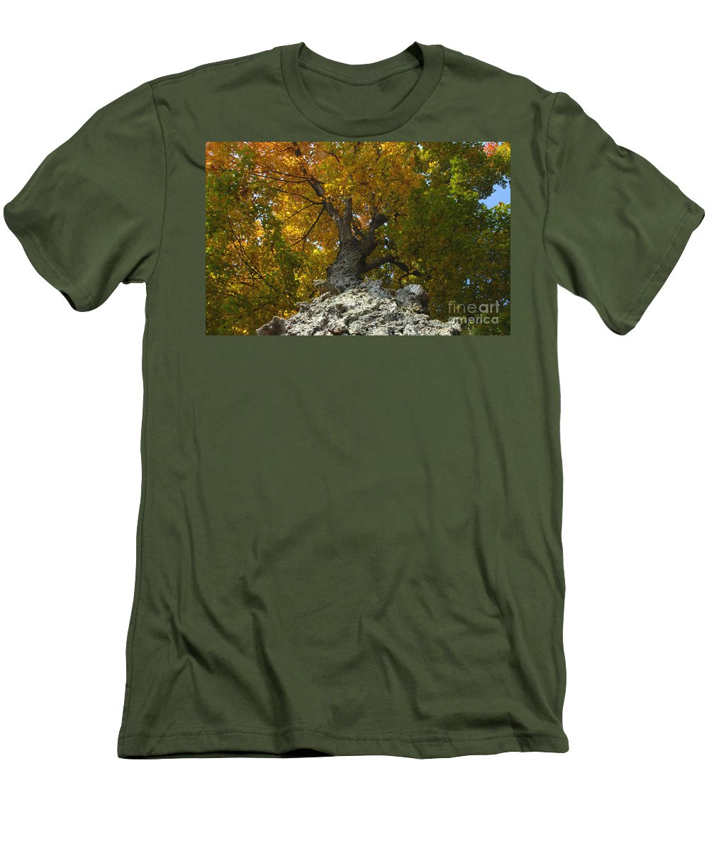 Fall Men's T-Shirt (Athletic Fit) featuring the photograph Falling Tree by David Lee Thompson