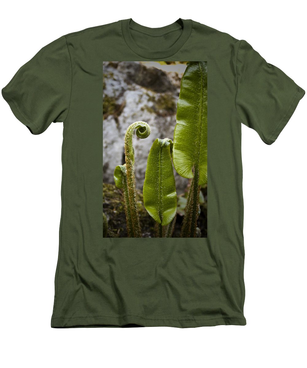 Irish Men's T-Shirt (Athletic Fit) featuring the photograph Fern Study At Blarney Castle Ireland by Teresa Mucha