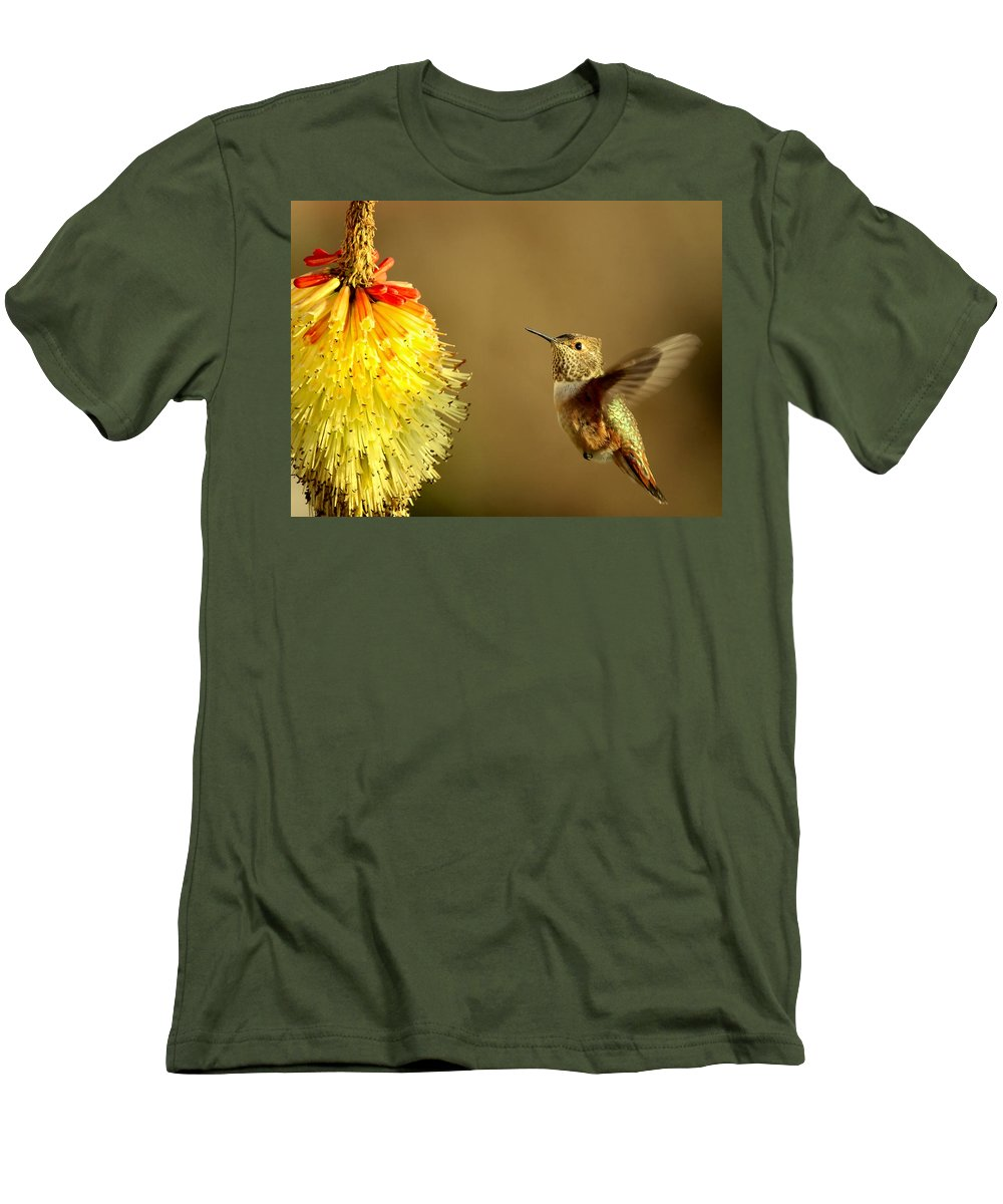 Hummingbird Men's T-Shirt (Athletic Fit) featuring the photograph Flight Of The Hummer by Mike Dawson