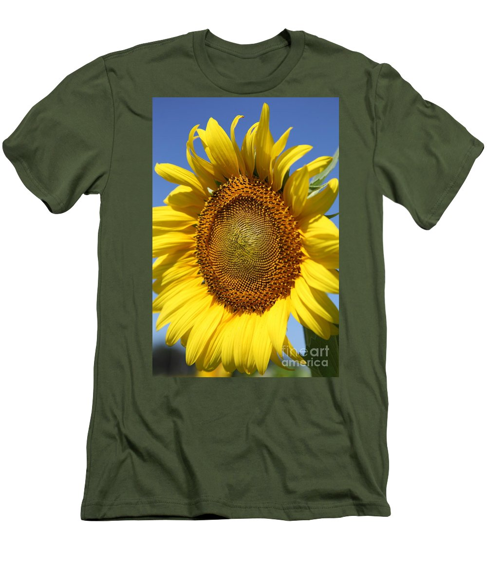 Sunflowers Men's T-Shirt (Athletic Fit) featuring the photograph Full by Amanda Barcon