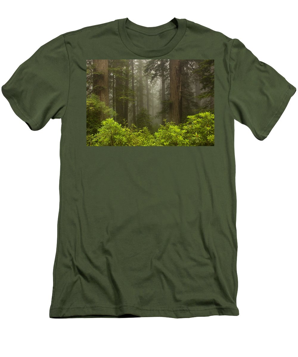 Redwood Men's T-Shirt (Athletic Fit) featuring the photograph Giants In The Mist by Mike Dawson