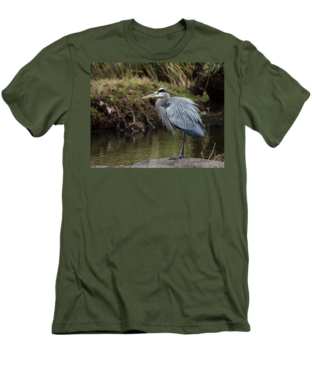 Hero Men's T-Shirt (Athletic Fit) featuring the photograph Great Blue Heron On The Watch by George Randy Bass