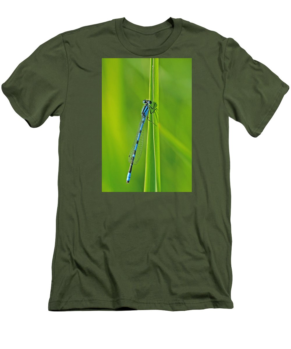 Damselfly Men's T-Shirt (Athletic Fit) featuring the photograph Hagens Bluet by Bill Morgenstern