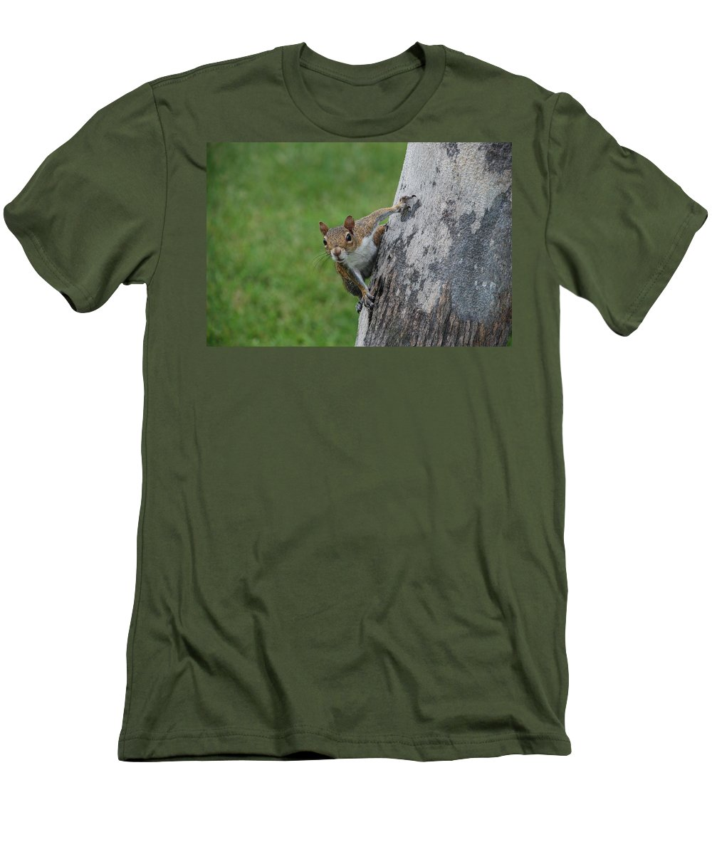 Squirrel Men's T-Shirt (Athletic Fit) featuring the photograph Hanging On by Rob Hans