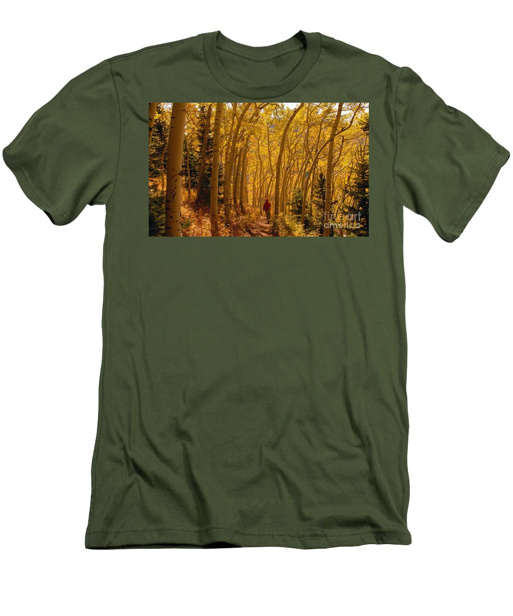 Fall Men's T-Shirt (Athletic Fit) featuring the photograph Hiking In Fall Aspens by David Lee Thompson