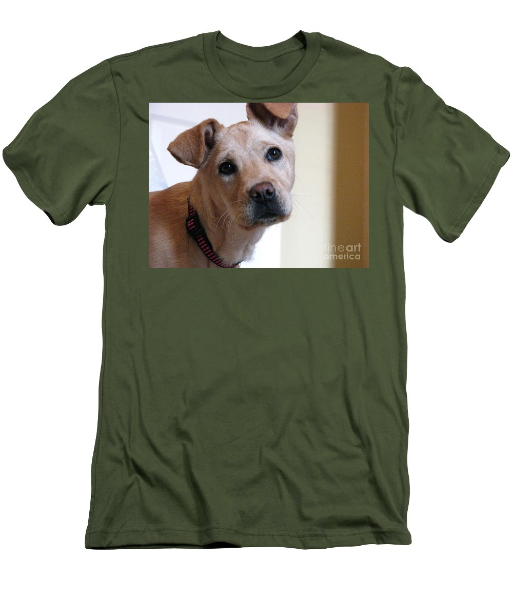 Dog Men's T-Shirt (Athletic Fit) featuring the photograph Honey by Amanda Barcon