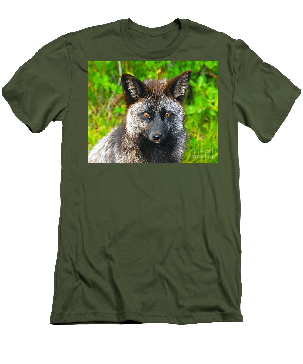 Gray Fox Men's T-Shirt (Athletic Fit) featuring the photograph Hungry Eyes by David Lee Thompson