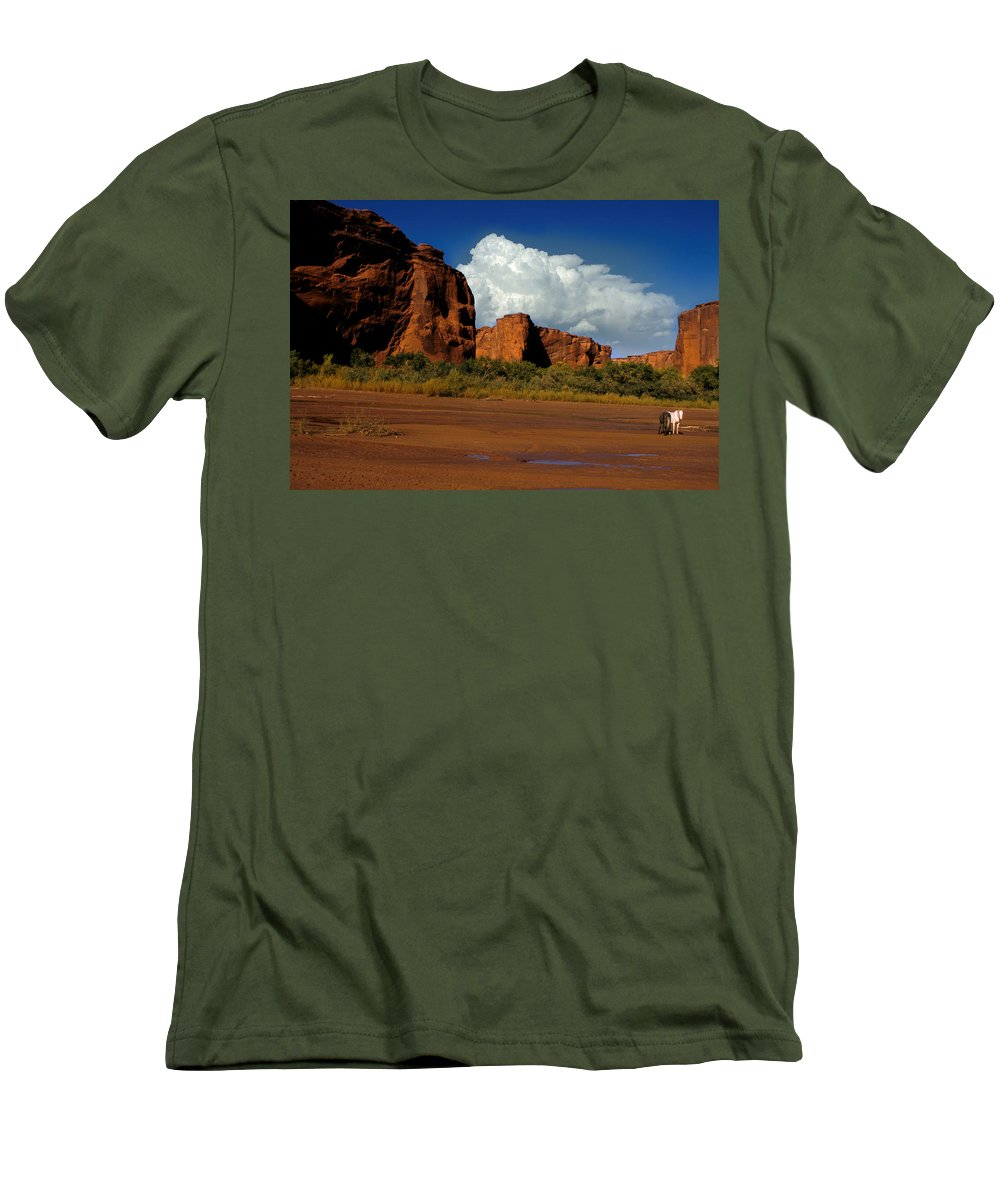 Horses Men's T-Shirt (Athletic Fit) featuring the photograph Indian Ponies In The Canyon by Jerry McElroy