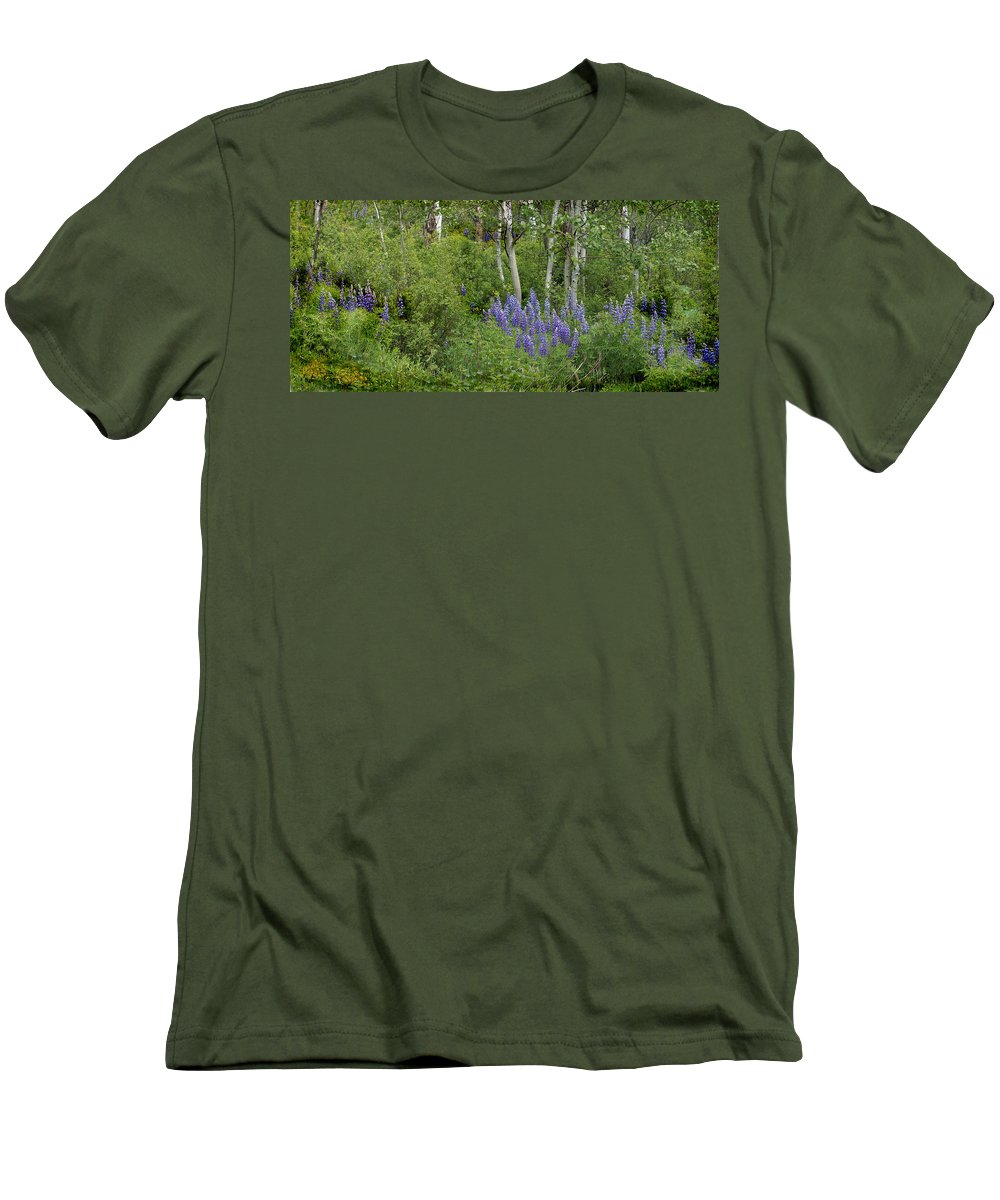 Aspen Men's T-Shirt (Athletic Fit) featuring the photograph Lupine And Aspens by Heather Coen