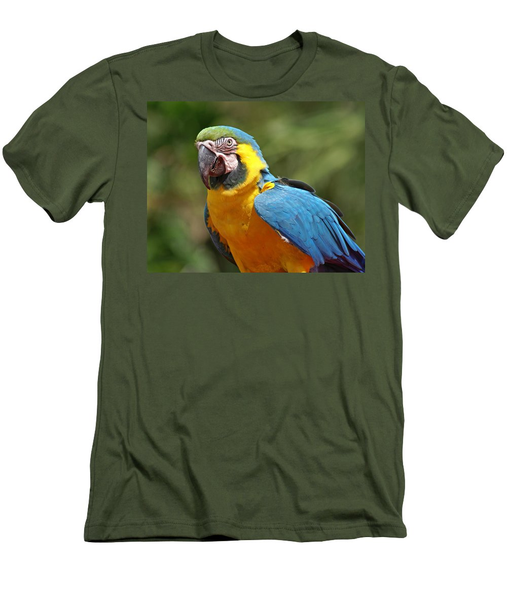 Parrot Men's T-Shirt (Athletic Fit) featuring the photograph Macaw by Heather Coen
