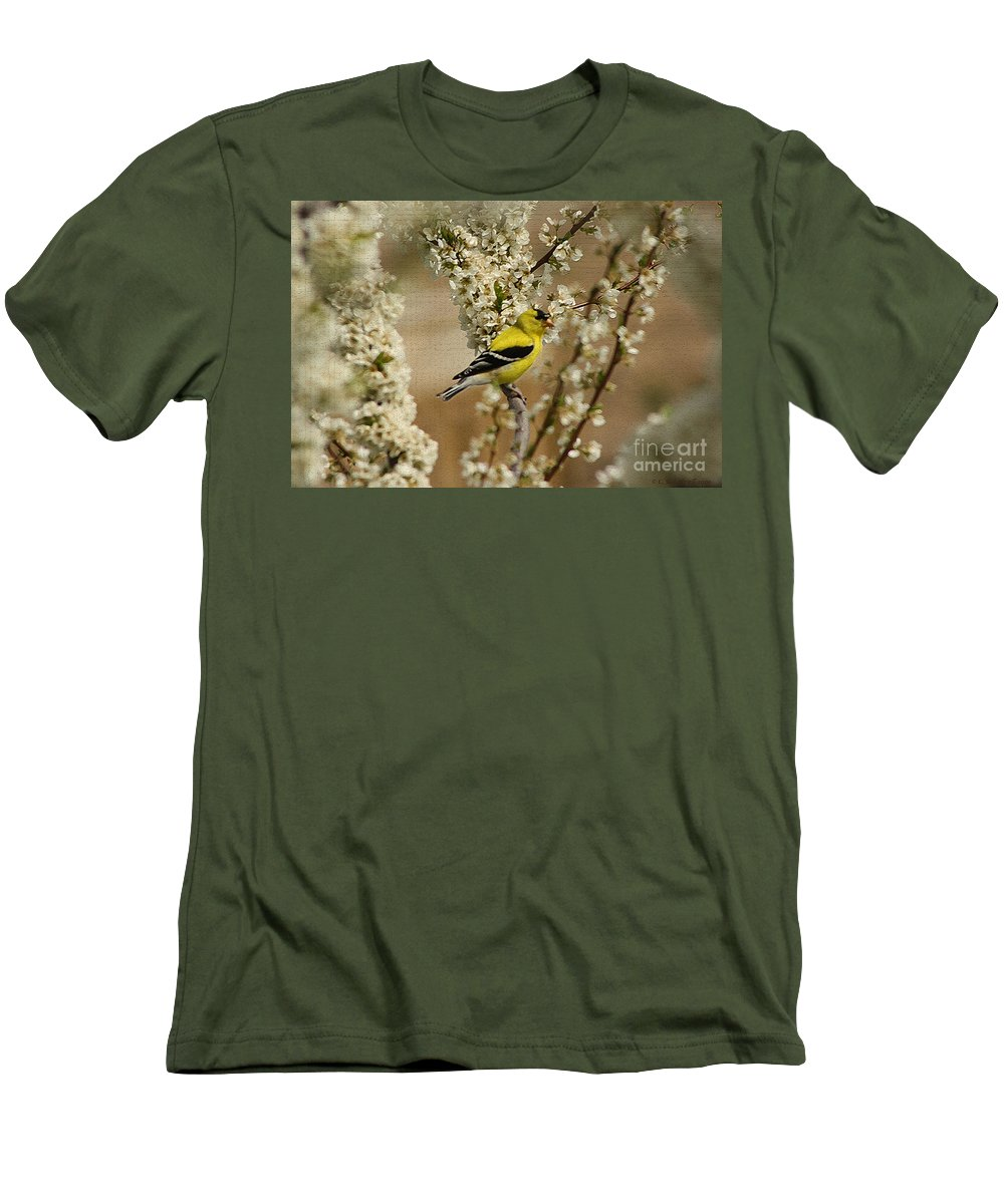 Finch Men's T-Shirt (Athletic Fit) featuring the photograph Male Finch In Blossoms by Cathy Beharriell