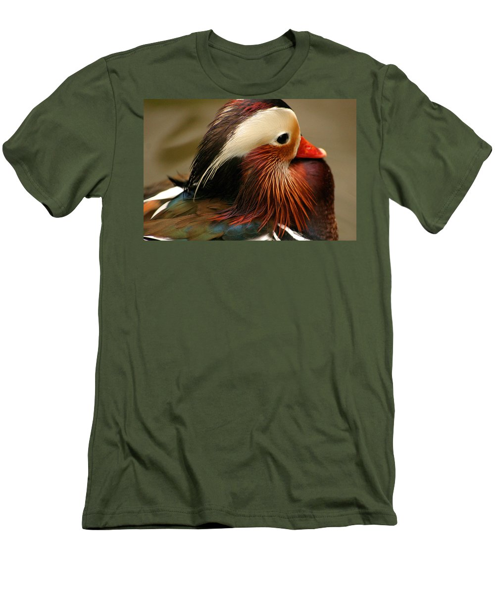 Mandarin Duck Men's T-Shirt (Athletic Fit) featuring the photograph Male Mandarin Duck China by Ralph A Ledergerber-Photography