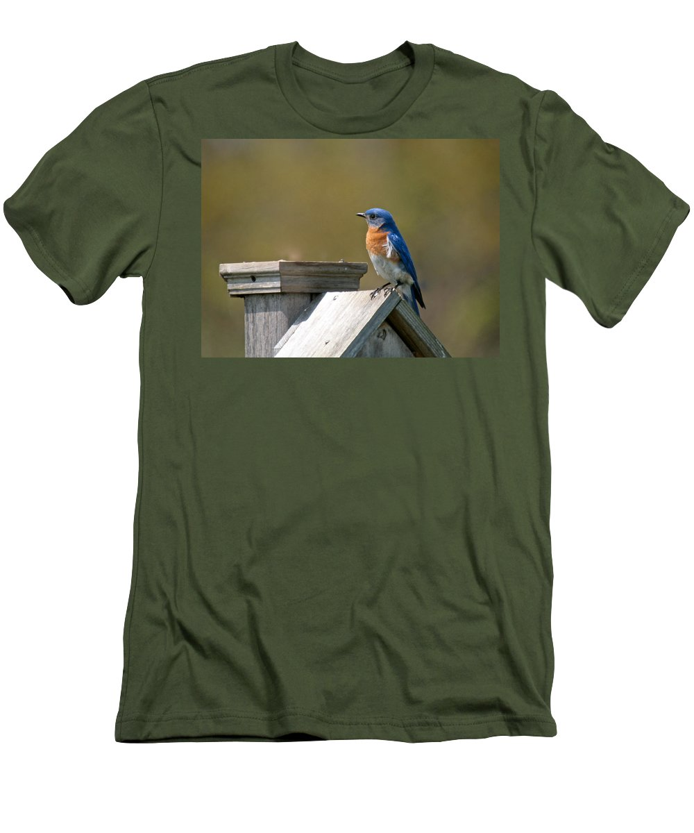 Blue Bird Men's T-Shirt (Athletic Fit) featuring the photograph Mr Blue Bird by Robert Pearson