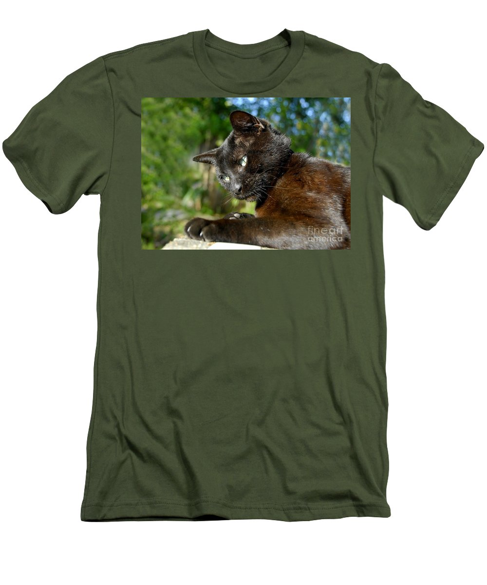 Cat Men's T-Shirt (Athletic Fit) featuring the photograph Mr. Night by David Lee Thompson