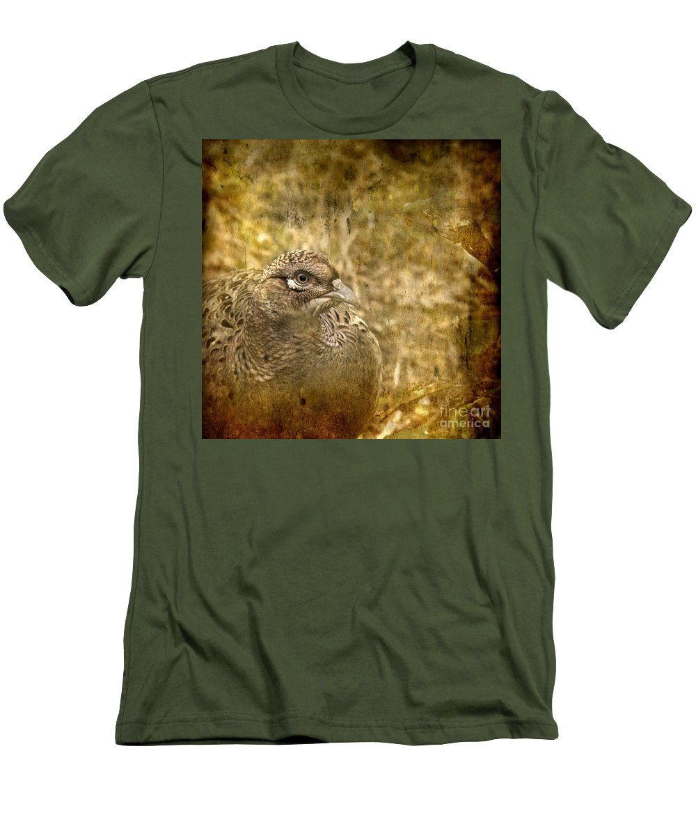 Pheasant Men's T-Shirt (Athletic Fit) featuring the photograph Mrs Pheasant by Angel Ciesniarska
