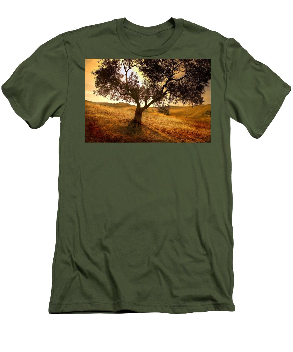 Landscape Men's T-Shirt (Athletic Fit) featuring the photograph Olive Tree Dawn by Mal Bray
