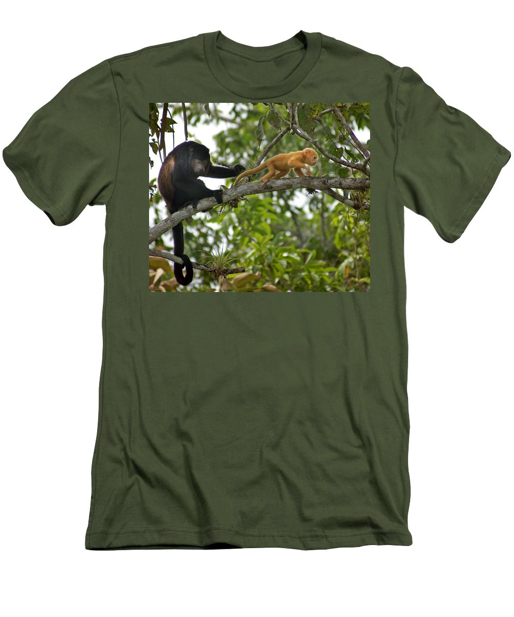 Monkey Men's T-Shirt (Athletic Fit) featuring the photograph Rare Golden Monkey by Heather Coen