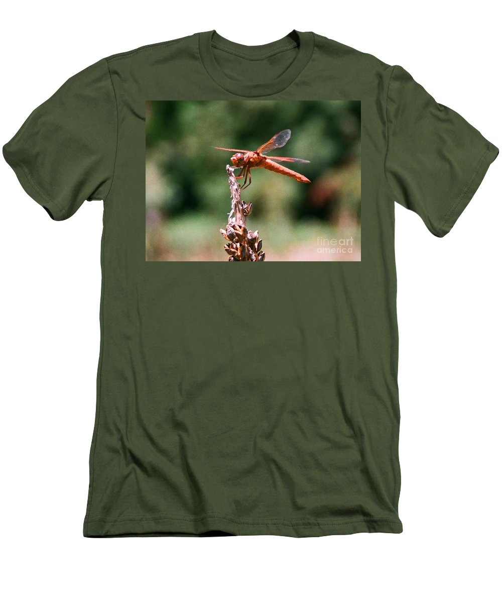 Dragonfly Men's T-Shirt (Athletic Fit) featuring the photograph Red Dragonfly II by Dean Triolo