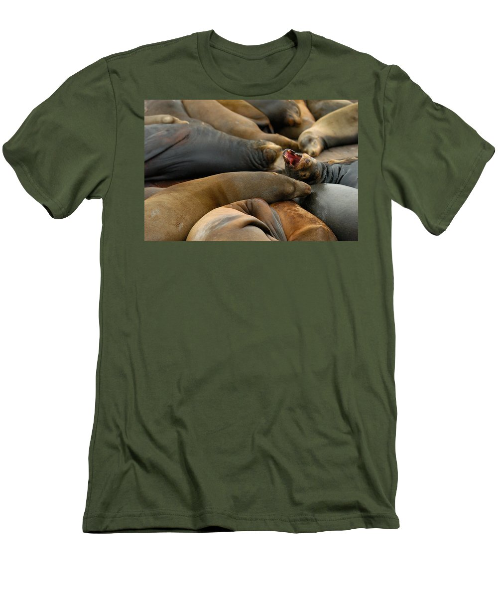 Sea Lions Pier 39 San Francisco Animal Photography Men's T-Shirt (Athletic Fit) featuring the photograph Sea Lions At Pier 39 San Francisco by Sebastian Musial