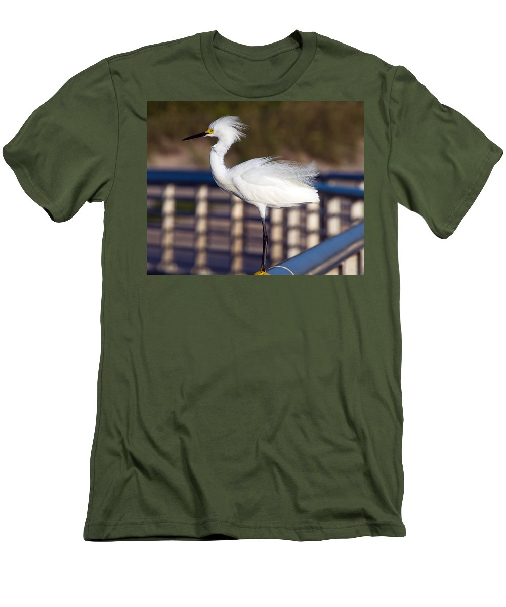 Snow; Snowy; Egret; Egretta; Thula; Bird; Florida; Seabird; Sea; Shore; Coast; Atlantic; Yellow; Fee Men's T-Shirt (Athletic Fit) featuring the photograph Snowy Egret by Allan Hughes