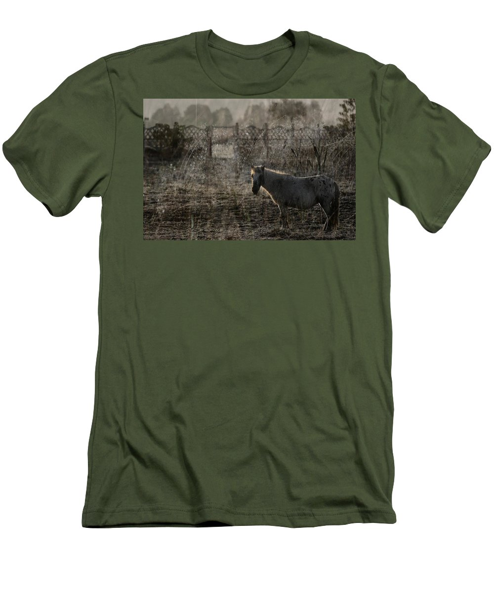 Pferd Men's T-Shirt (Athletic Fit) featuring the photograph The Frosty Morning by Angel Ciesniarska