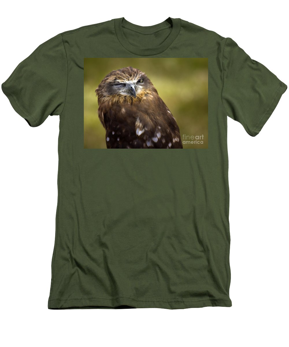 Owl Men's T-Shirt (Athletic Fit) featuring the photograph The Little Owl by Angel Ciesniarska