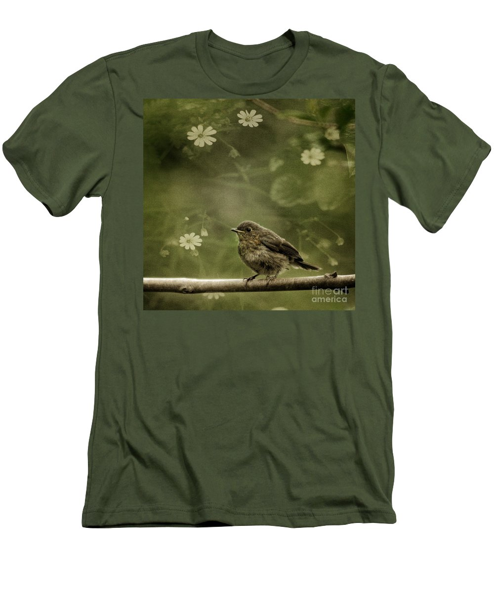 Robin Men's T-Shirt (Athletic Fit) featuring the photograph The Little Robin by Angel Ciesniarska