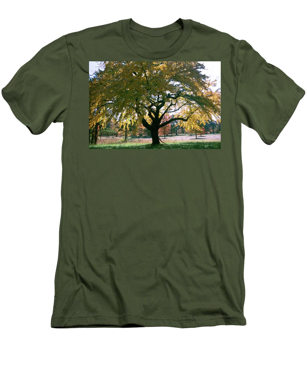Tree Men's T-Shirt (Athletic Fit) featuring the photograph Tree by Flavia Westerwelle