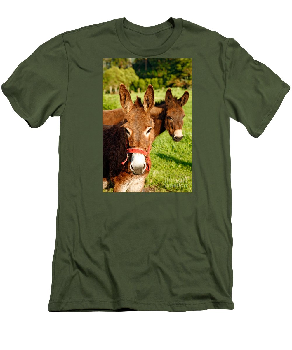 Animals Men's T-Shirt (Athletic Fit) featuring the photograph Two Donkeys by Gaspar Avila