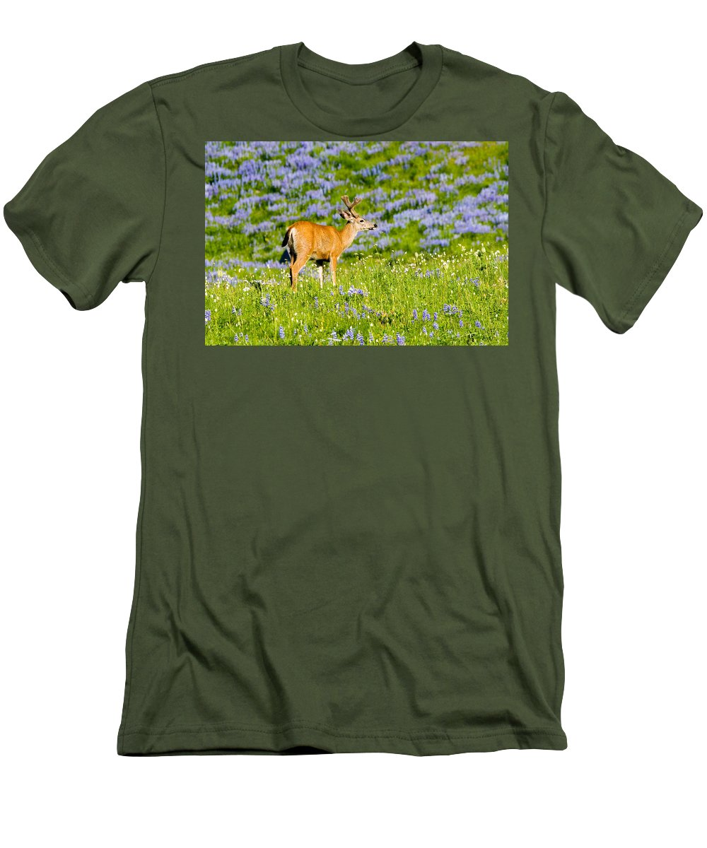 Deer Men's T-Shirt (Athletic Fit) featuring the photograph Velvet On Lupine by Mike Dawson