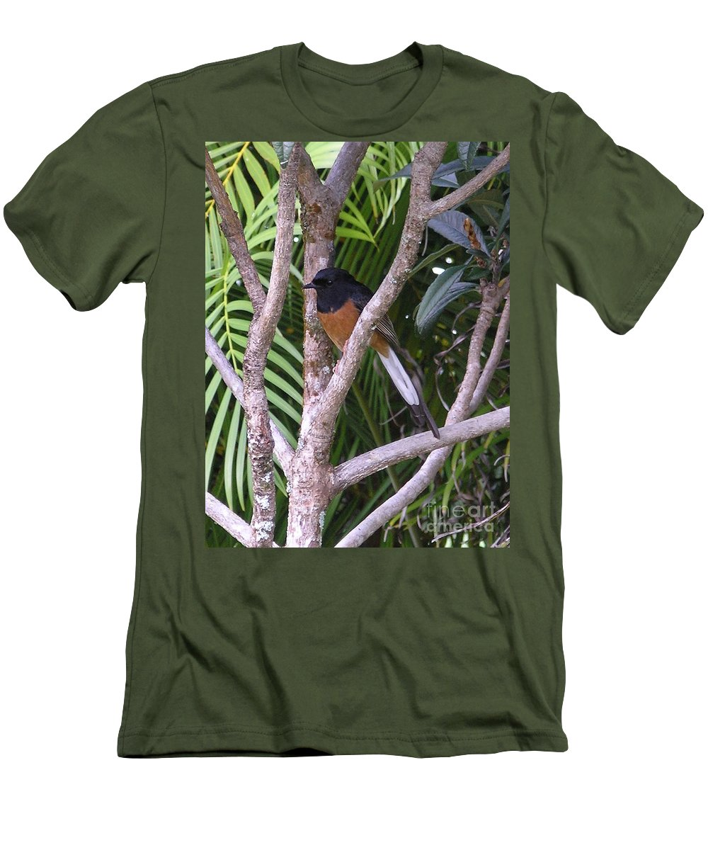 Black Birds Men's T-Shirt (Athletic Fit) featuring the photograph White Rumped Shama by Mary Deal
