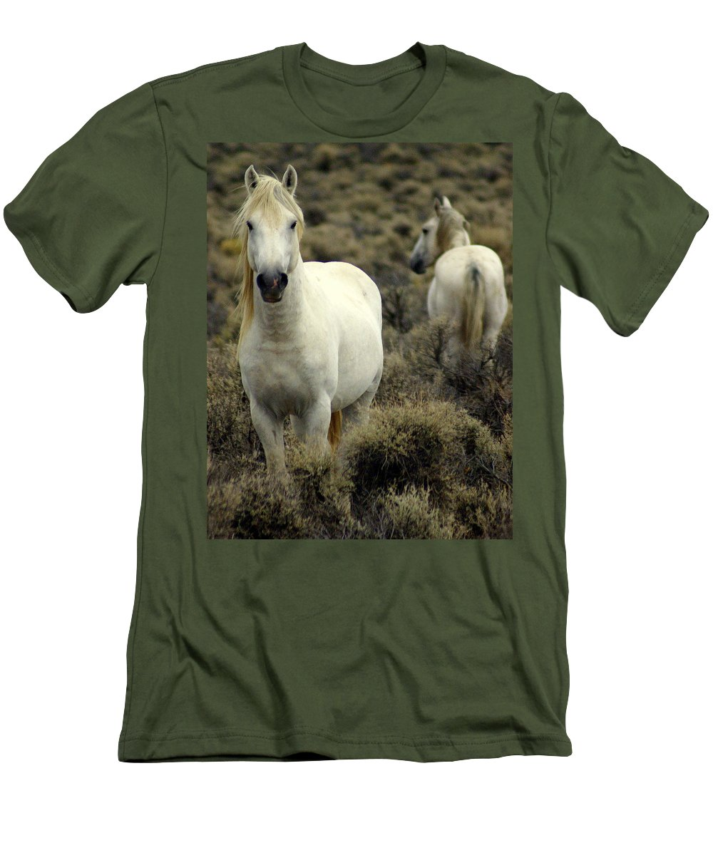 Wild Horses Men's T-Shirt (Athletic Fit) featuring the photograph Wild Stallion by Marty Koch