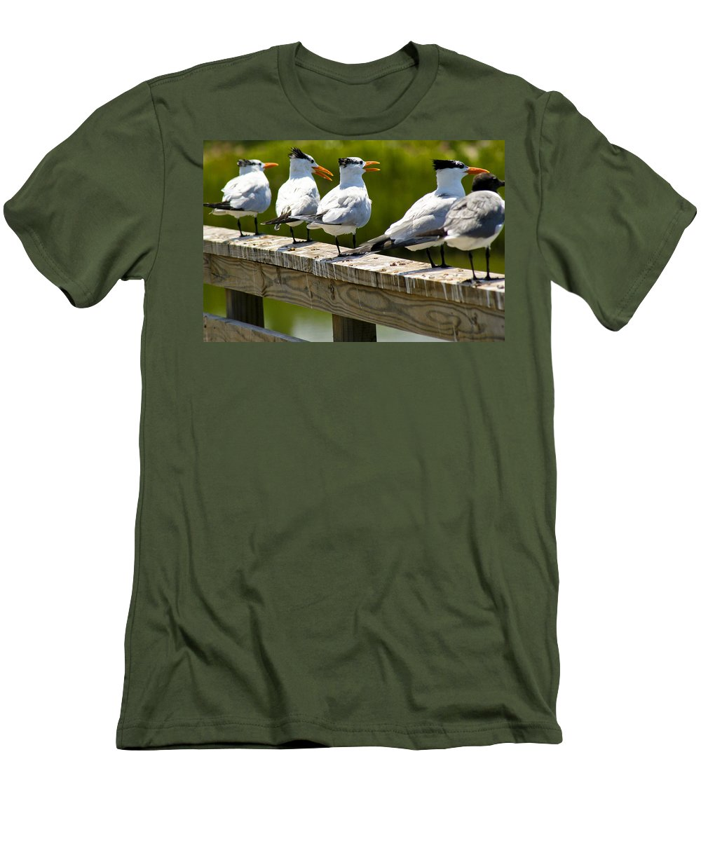 Bird Men's T-Shirt (Athletic Fit) featuring the photograph Yackety Yackety by Marilyn Hunt