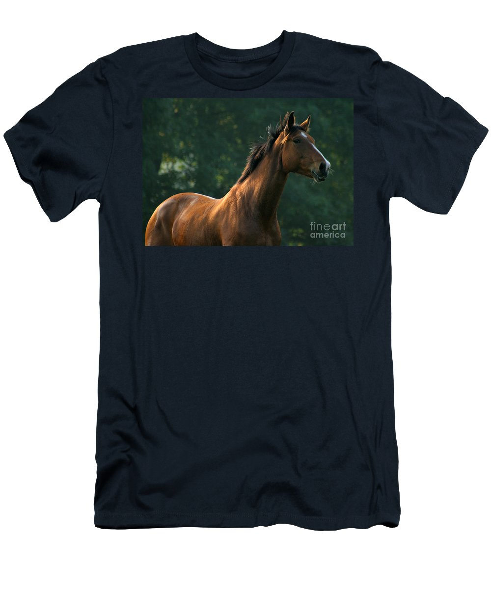 Horse Men's T-Shirt (Athletic Fit) featuring the photograph The Observer by Angel Ciesniarska