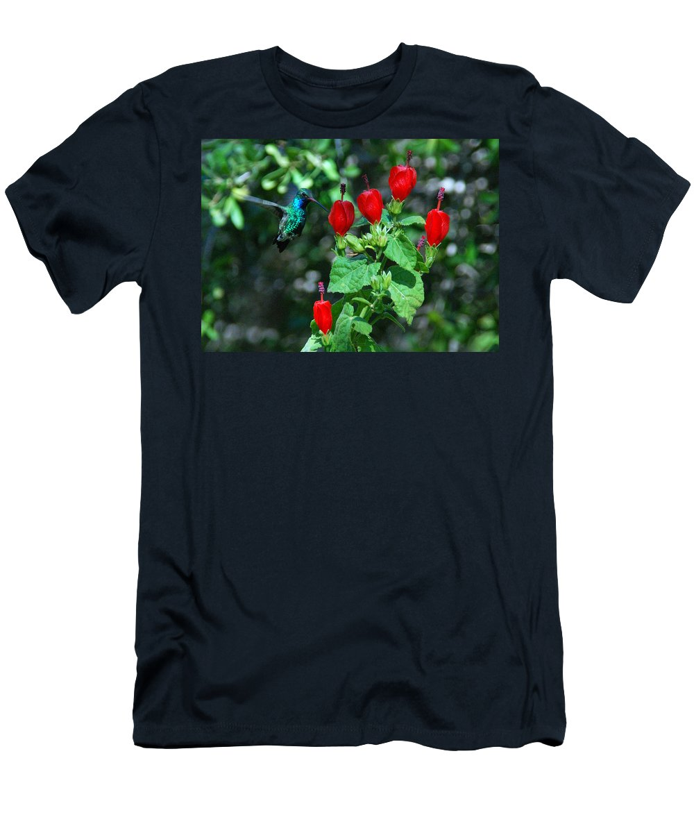 Hummingbird Men's T-Shirt (Athletic Fit) featuring the photograph Hummingbird by Tam Ryan
