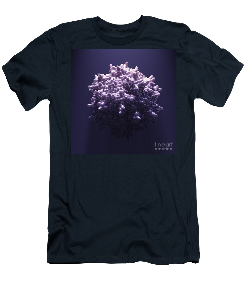 Aav Men's T-Shirt (Athletic Fit) featuring the photograph Adeno-associated Virus by Science Picture Co