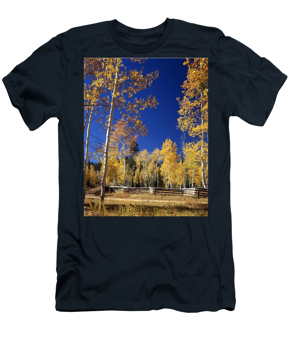 Aspens Men's T-Shirt (Athletic Fit) featuring the photograph Aspens In Fall - V by Ed Cooper Photography