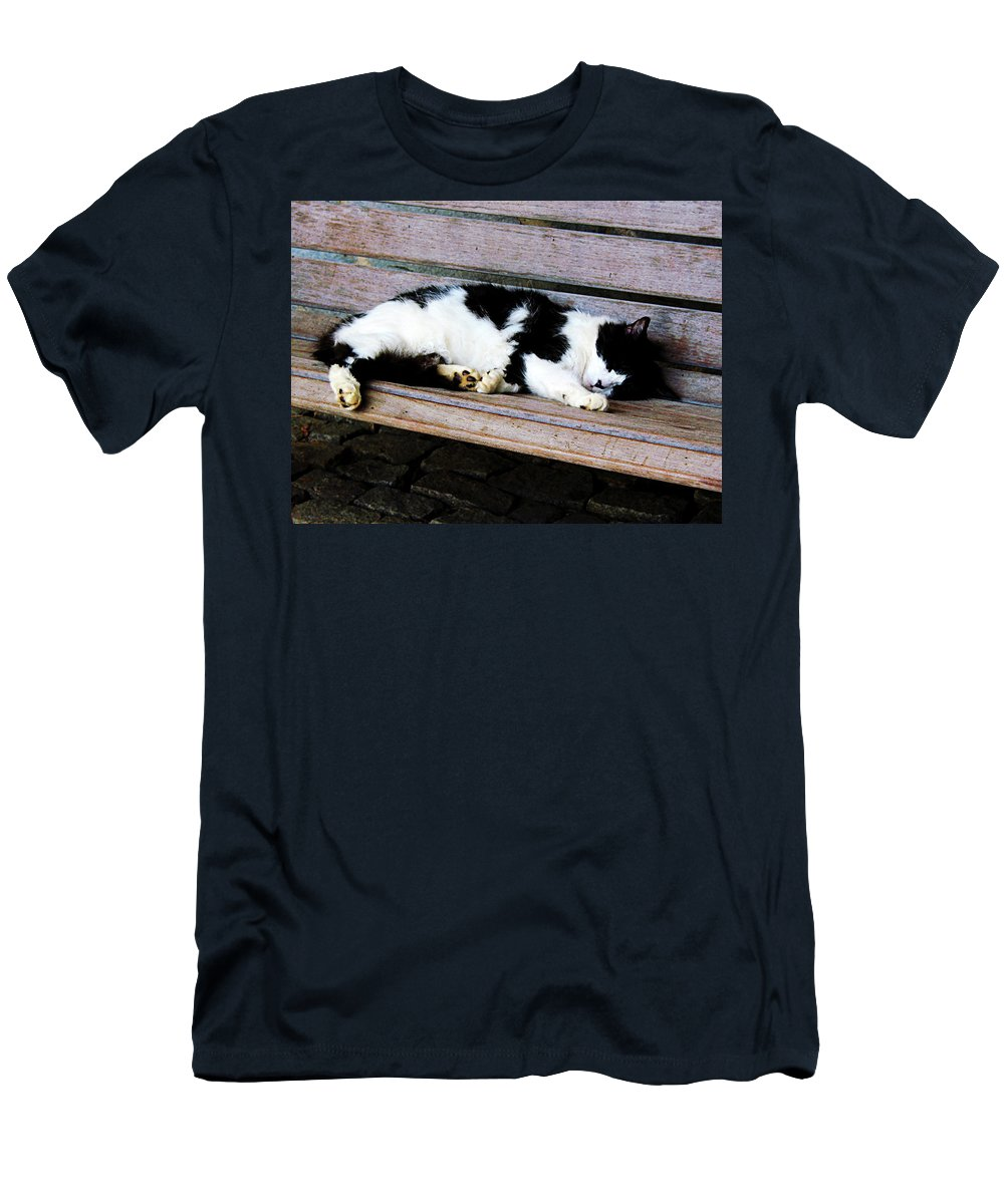 Cat Men's T-Shirt (Athletic Fit) featuring the photograph Cat Sleeping On Bench by Susan Savad