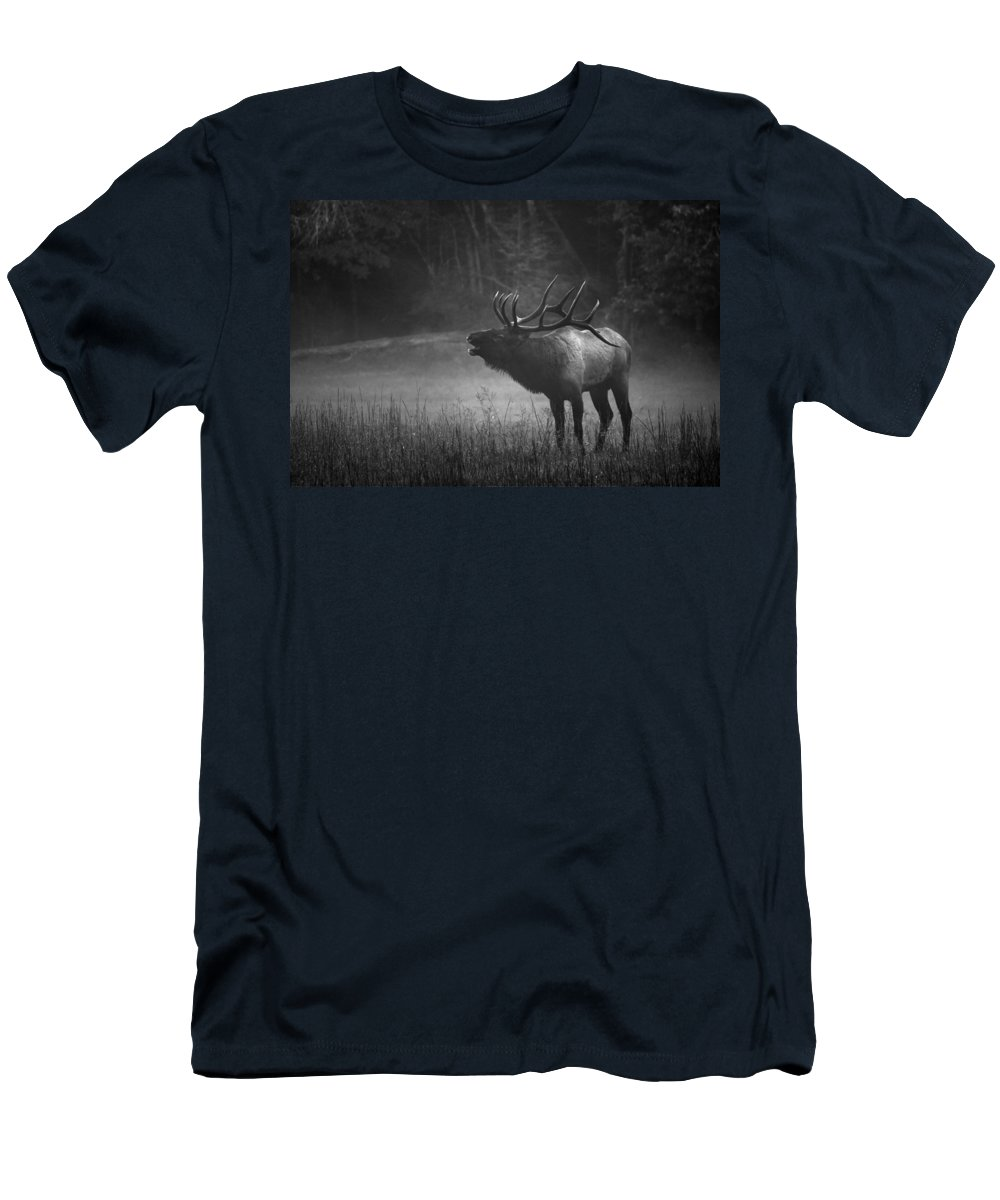 Carol R Montoya Men's T-Shirt (Athletic Fit) featuring the photograph Cataloochee Bull Elk by Carol Montoya